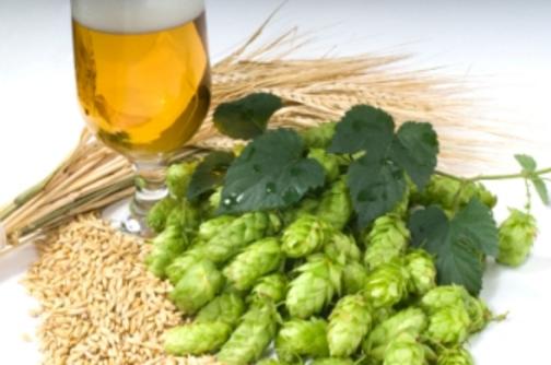 精酿啤酒酿造原料的保存