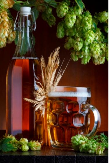 精酿啤酒工艺:为什么氧气不利于家酿啤酒?