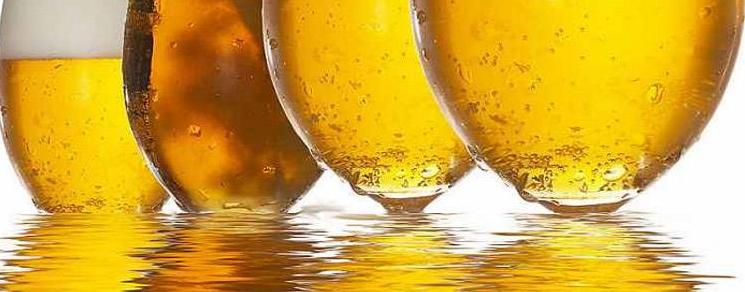 家酿啤酒中的酚类物质和丹宁