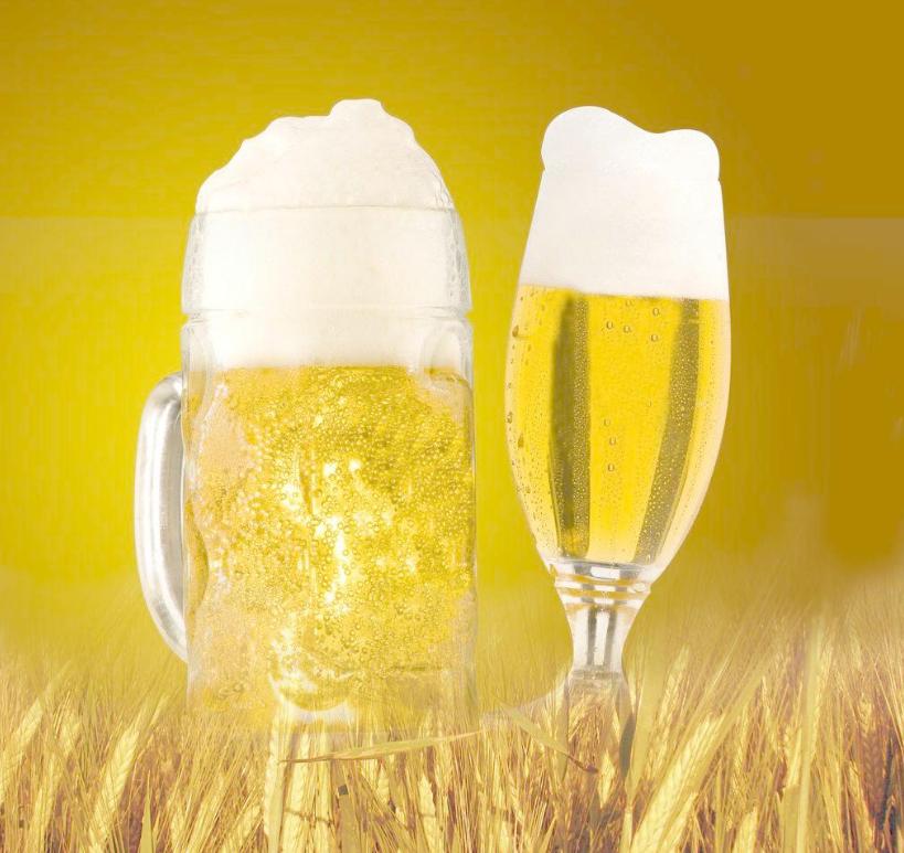 精酿啤酒介绍:法兰德斯艾尔啤酒和柏林啤酒介绍
