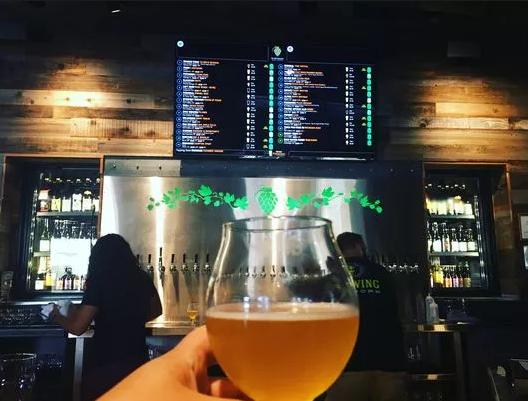 商酿啤酒酿造记录单